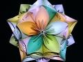 origami_shar-10.jpg