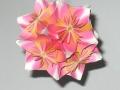 origami_shar-16.jpg
