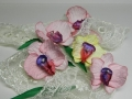 orhidea-bum-5.jpg