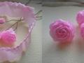 roza-bum-5
