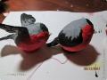 pticy-vaty-36.jpg