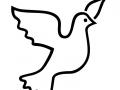 shablony-golubej-01.jpg