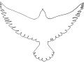 shablony-golubej-11.jpg