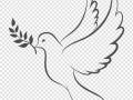 shablony-golubej-12.jpg