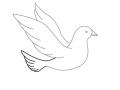 shablony-golubej-13.jpg