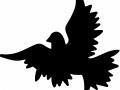shablony-golubej-18.jpg