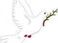 shablony-golubej-21.jpg