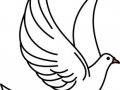 shablony-golubej-25.jpg