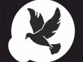 shablony-golubej-26.jpg