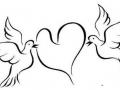 shablony-golubej-31.jpg