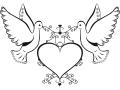 shablony-golubej-32.jpg