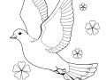 shablony-golubej-36.jpg