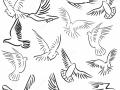 shablony-golubej-39.jpg