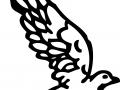 shablony-golubej-40.jpg