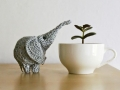 raduzhnye-sloniki-08.jpg