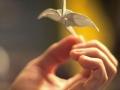 zhuravlik-origami-20.jpg