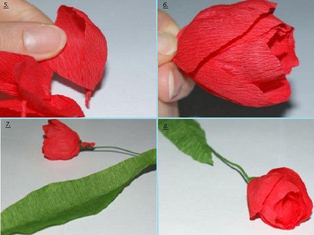 Цветы тюльпаны из бумаги
