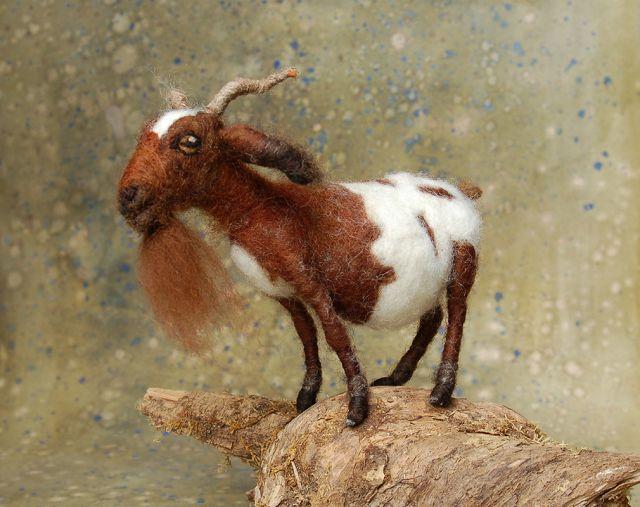 коза изшерсти