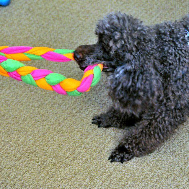 Плетеная игрушка из флиса для собаки-6
