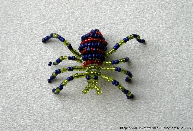Толстый паук