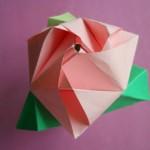 kub-transformer-roza-09