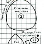 maska-i-kostyum-porosenka-27