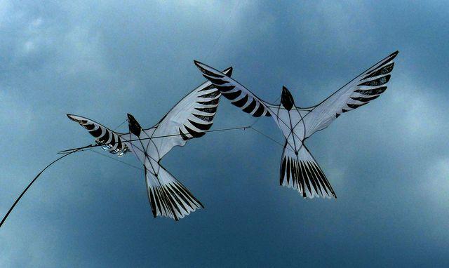 Две бумажных птицы