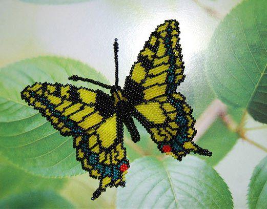 Бабочка на листе