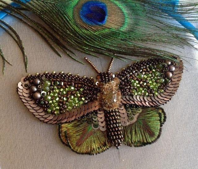 Бабочка рядом с павлиньим пером