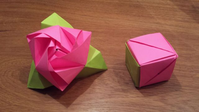 Цветок на столе и кубик